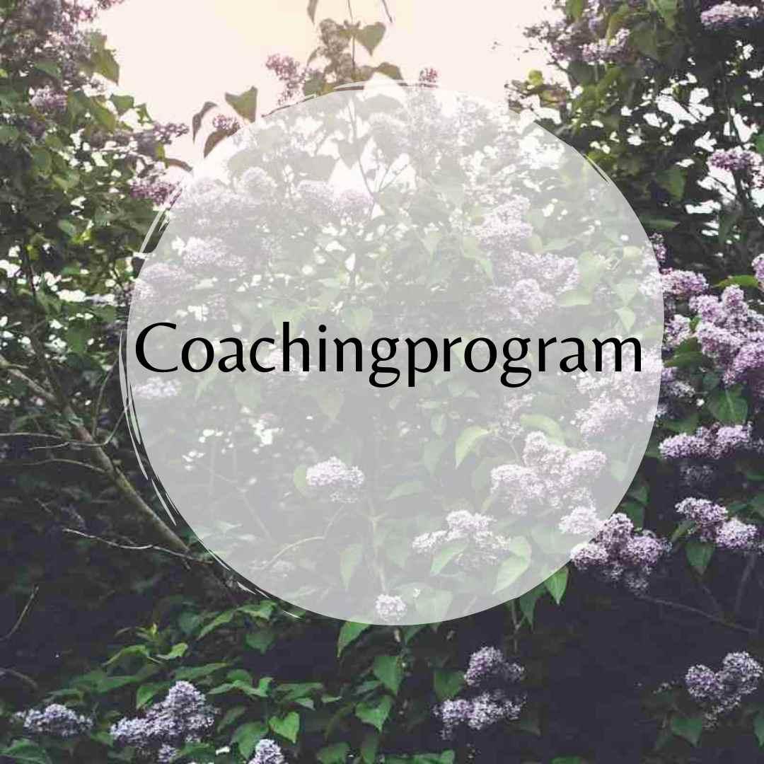 coachingprogram